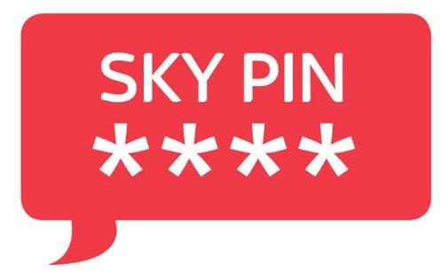 sky-pin