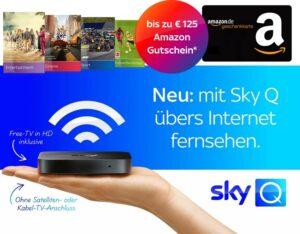 Sky Q über Internet - Sky Q IPTV Angebote ab 12,50€ mtl.