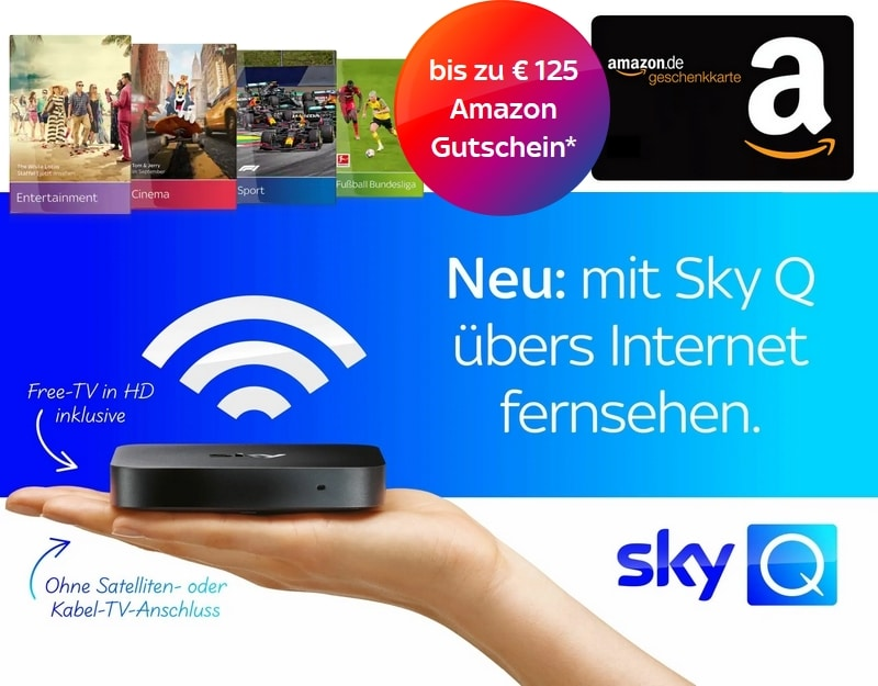 Sky Q über Internet - Sky Q IPTV Angebote ab 12,50€ mtl. im Überblick